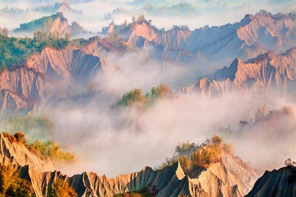 草山月世界